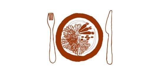 Wirsingrouladen mit Kürbis-Karotten-Füllung