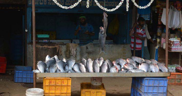 frischer Fisch auf Markt